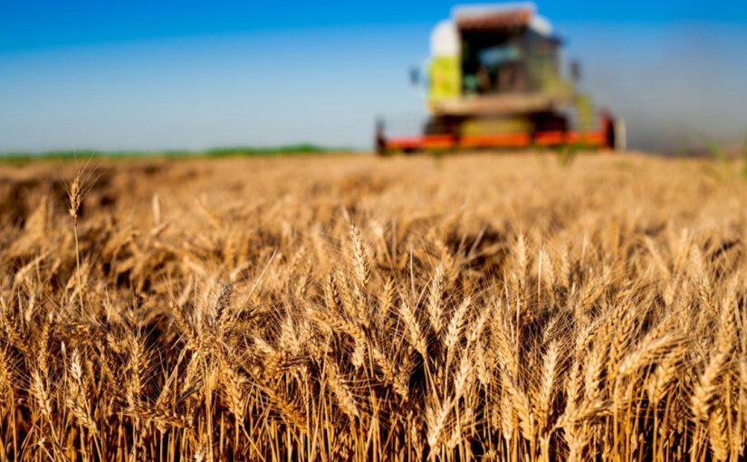 Сельскохозяйственное обозрение